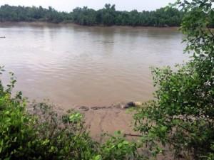 Tin tức trong ngày - Đang đánh cá, tá hỏa phát hiện thi thể trôi sông