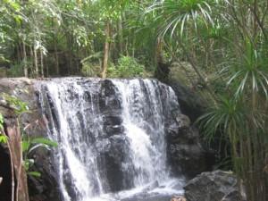 Du lịch - Xuyên rừng khám phá suối Tranh Phú Quốc đẹp như mơ