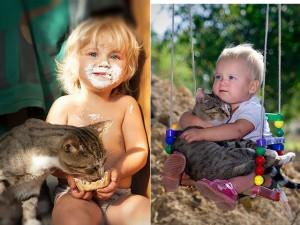 8X + 9X - 20 bức ảnh chứng tỏ bé nên có một bạn mèo