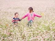 Du lịch - Khám phá những vùng hoa tam giác mạch đẹp nhất Việt Nam