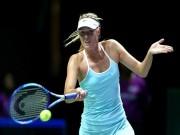 Thể thao - Halep - Sharapova: Loạng choạng (WTA Finals)