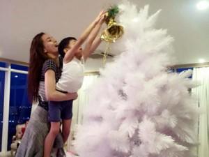 """Đời sống Showbiz - Facebook sao 12/12: Hà Hồ đón Noel bên """"người tình nhỏ"""""""
