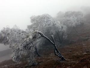 Tin thời tiết - Rét đậm bao phủ miền Bắc, Mẫu Sơn chuyển rét 3,3 độ C
