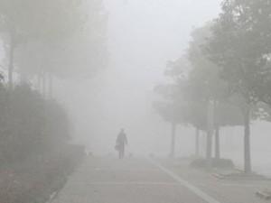 Phi thường - kỳ quặc - Lạc đường khi sang nhà hàng xóm vì... sương mù dày đặc