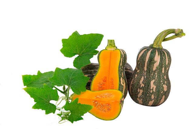 Mùa thu ăn những loại rau củ quả này sẽ an toàn - 2