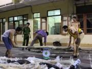 An ninh Xã hội - Cảnh sát giao thông bắt giữ 6 tạ gỗ sưa đỏ trong đêm