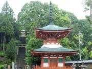 """Du lịch - Ngôi đền treo hàng trăm """"bộ ngực"""" phụ nữ ở Nhật Bản"""