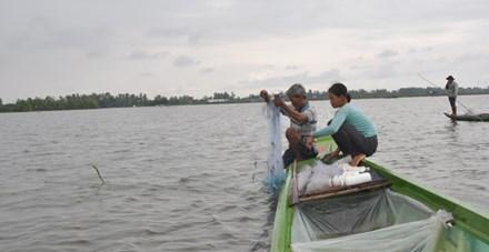 Đồng bằng Sông Cửu Long: Dân rốn lũ đỏ mắt tìm cá - 1