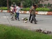 Tin tức trong ngày - Dân kéo lê xác cá 'chặn' quốc lộ 51