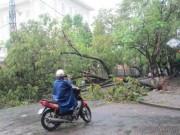 Tin tức trong ngày - Hai người chết và mất tích do áp thất nhiệt đới ở Huế