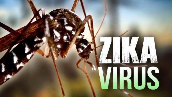 Thêm 2 người Việt Nam nhiễm Zika  tại TP. Hồ Chí Minh - 1