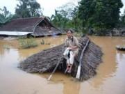 Tin tức trong ngày - Chùm ảnh: Dân bám nóc nhà tránh lũ ở Quảng Bình