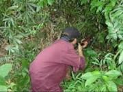An ninh Xã hội - Nhắm bắn thú rừng, trúng người đi bắt dúi