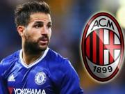 Bóng đá - Fabregas: Chelsea hắt hủi, Milan cũng phũ phàng