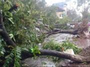 Tin tức trong ngày - Hà Nội ra công điện khẩn ứng phó siêu bão Sarika