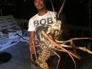 Thế giới - Mỹ: Bắt được tôm hùm khổng lồ 40 tuổi nặng 6kg