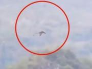 Phi thường - kỳ quặc - Phát hiện rồng khổng lồ bay trên núi ở Trung Quốc?