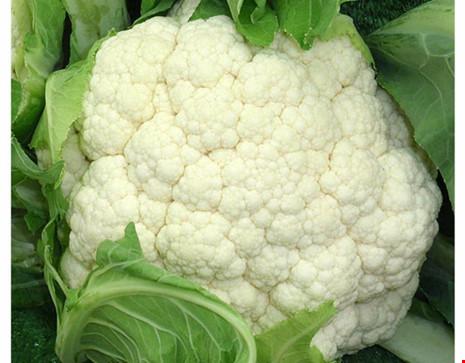 6 thực phẩm tốt cho giảm cân vào mùa thu - 5