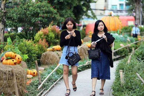 """Ngắm """"làng bí thần tiên"""" ở Sài Gòn - 13"""