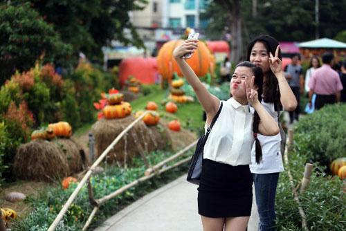 """Ngắm """"làng bí thần tiên"""" ở Sài Gòn - 14"""