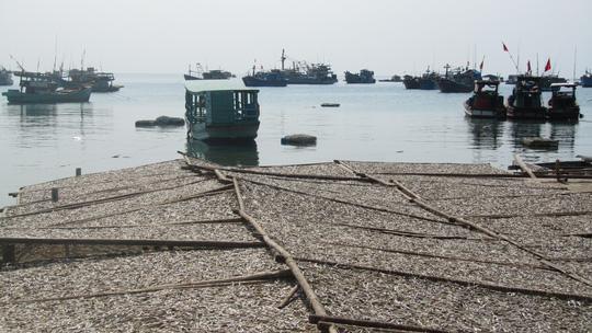 Những ngày đi trốn trên đảo Nam Du - 3