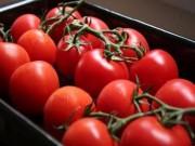 Sức khỏe đời sống - 9 loại trái cây ăn vào là tiêu mỡ bụng