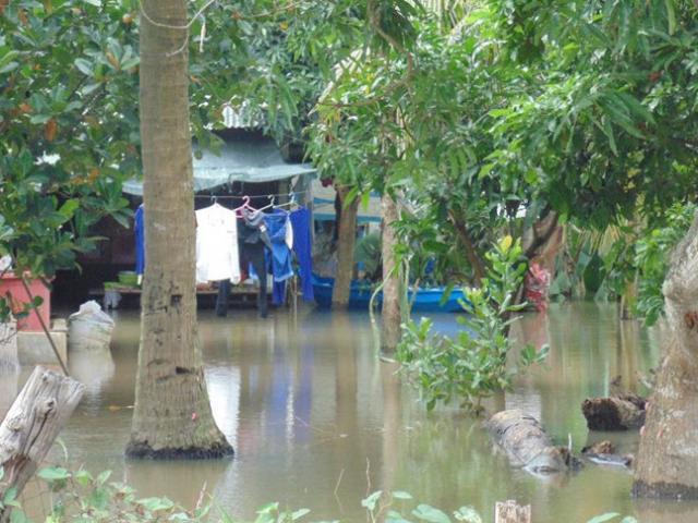 Tắm sông, 4 học sinh lớp 6 chết đuối và mất tích - 2