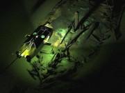 Thế giới - Tìm thấy đội tàu ma từ thời Trung Cổ dưới đáy Biển Đen