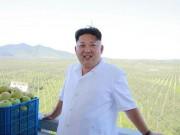 Thế giới - Kim Jong-un uống 10 chai Bordeaux đắt tiền trong bữa tối?