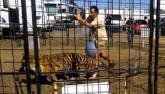 Mỹ: Hổ Bengal bất ngờ tấn công, kéo lê HLV trong hội chợ