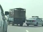 Tin tức trong ngày - Ô tô chạy ngược chiều gần 10km trên cao tốc HN-Lào Cai