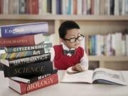 Giáo dục - du học - Ảo tưởng thần đồng, cha mẹ đang hại con mà không biết
