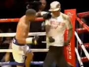 Thể thao - Boxing: Knock-out trò, cáu tiết tẩn luôn thầy