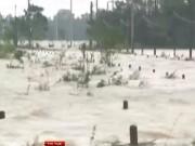 Video An ninh - Quảng Bình: 1 người chết, gần 1000 nhà dân chìm trong lũ