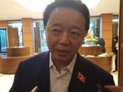 Bộ trưởng Môi trường nói về xử lý trách nhiệm vụ Formosa