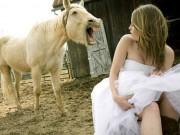 """Tranh vui - Xem xong bộ ảnh cưới... """"cười ra nước mắt"""""""
