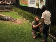 Phi thường - kỳ quặc - Úc: Vừa cho cá sấu khổng lồ ăn, vừa cầu hôn bạn gái
