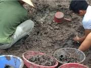 Tin tức trong ngày - Tin mới nhất vụ hài cốt chôn trộm ở Thái Bình