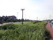 Tin tức trong ngày - Đề nghị Hà Nội cắt cỏ đường quốc lộ
