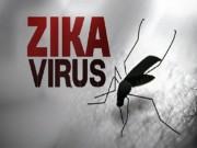 Sức khỏe đời sống - Bà Rịa-Vũng Tàu: Ghi nhận ca nhiễm virus Zika đầu tiên