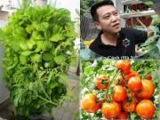 Bạn trẻ - Cuộc sống - Chàng trai sợ chết sớm dạy trồng rau dễ như ăn kẹo