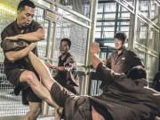 Phim - Màn đấu võ nghẹt thở của Chân Tử Đan trong Kungfu Jungle
