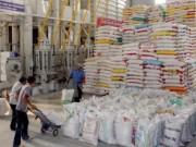Thị trường - Tiêu dùng - Kiểm tra 31 doanh nghiệp xuất khẩu gạo sang Trung Quốc