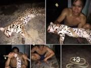 Tin tức trong ngày - Thanh niên khoe ảnh làm thịt mèo rừng quý hiếm trên facebook