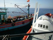 Tin tức trong ngày - Tàu cá chết máy, 18 thuyền viên hoảng loạn giữa biển