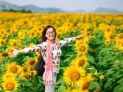 Du lịch - Lễ hội hoa hướng dương lần đầu tiên tại Nghệ An