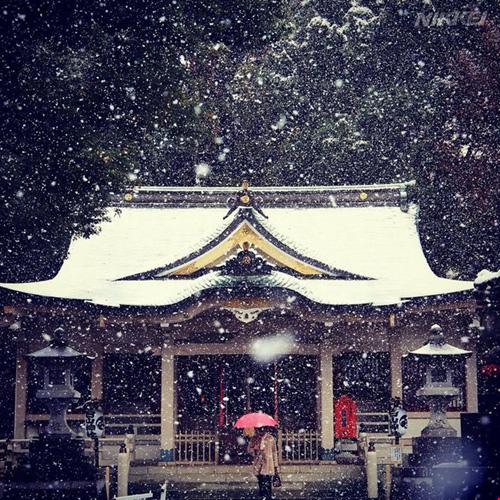 Ngắm tuyết rơi sớm tuyệt đẹp ở nhật bản - 13
