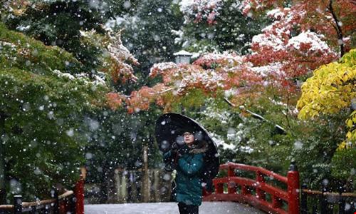 Ngắm tuyết rơi sớm tuyệt đẹp ở nhật bản - 12