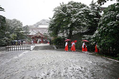 Ngắm tuyết rơi sớm tuyệt đẹp ở nhật bản - 5