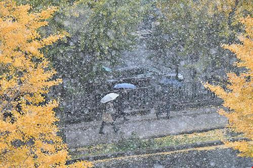 Ngắm tuyết rơi sớm tuyệt đẹp ở nhật bản - 4